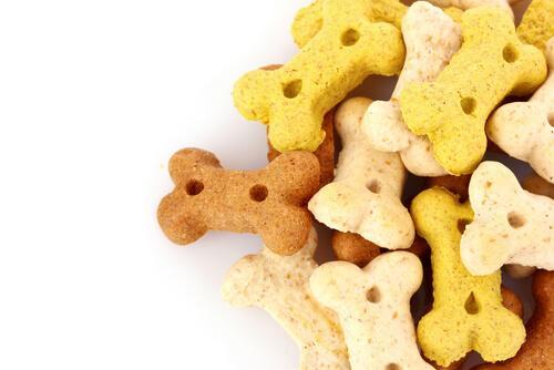 Terveelliset ja epäterveelliset koiran herkut
