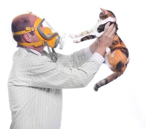 Allergies aux animaux de compagnie – Comment réduire les symptômes ?