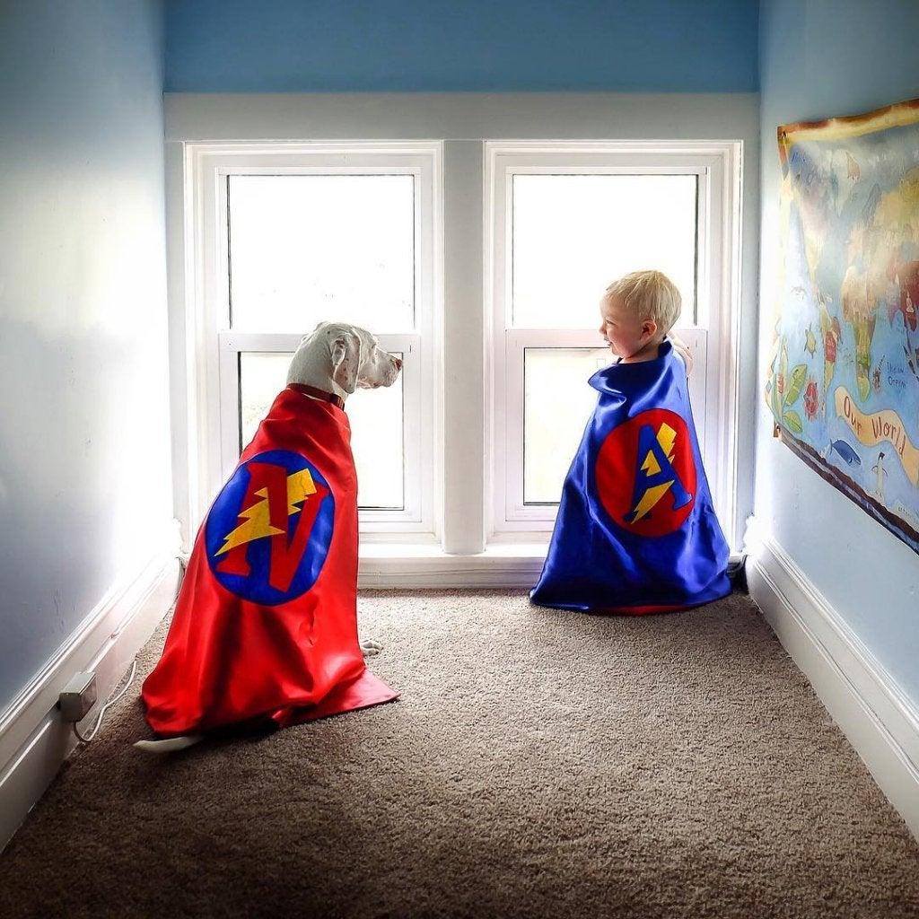 Un chien et un enfant jouant ensemble