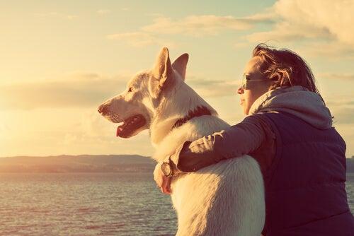 Un femme tient un chien blanc dans ses bras, tous les deux face à la mer l'air paisible