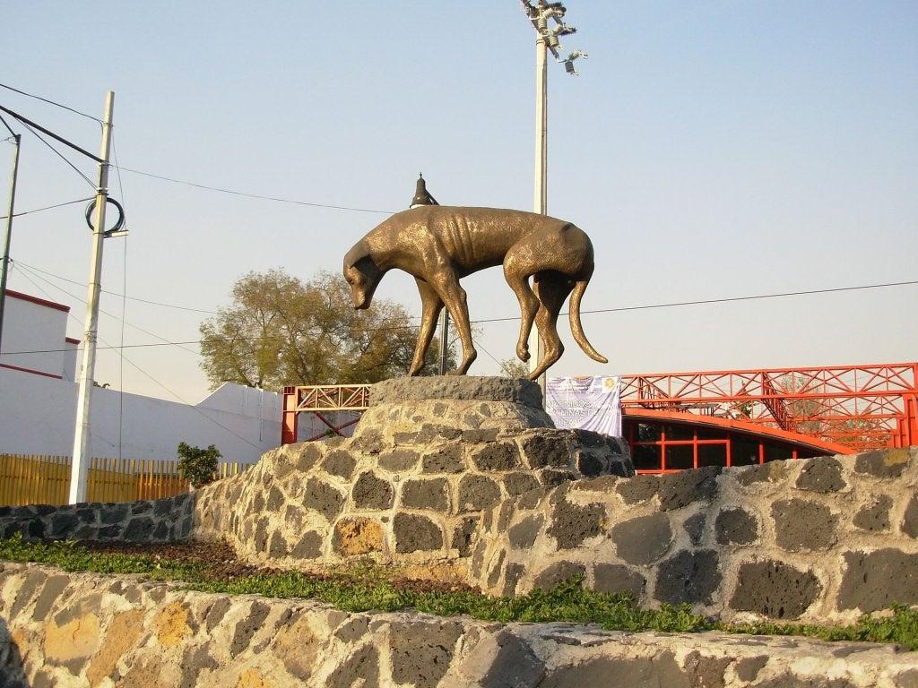 la statue du chien errant à Mexico