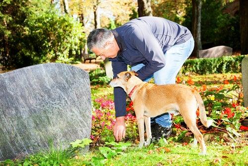 Un chien est un homme près d'une tombe