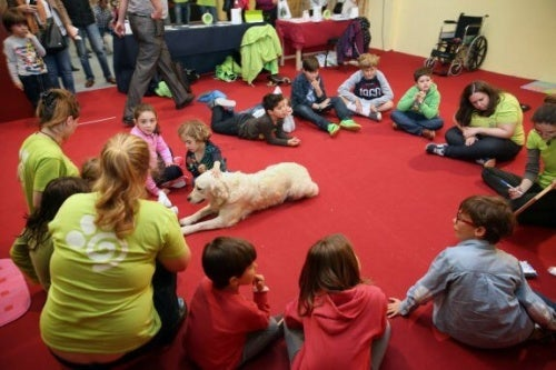 un chien installé au milieu d'un groupe d'enfants