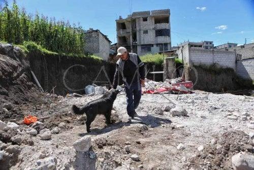 un chien et un homme sur les débris d'un tremblement de terre