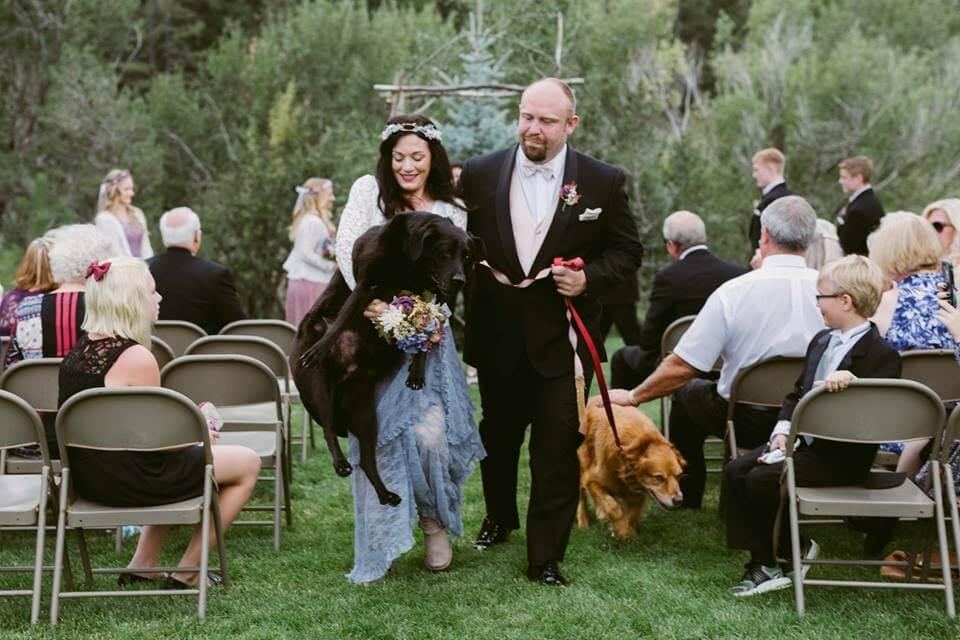 le mariage du couple avec leurs chiens