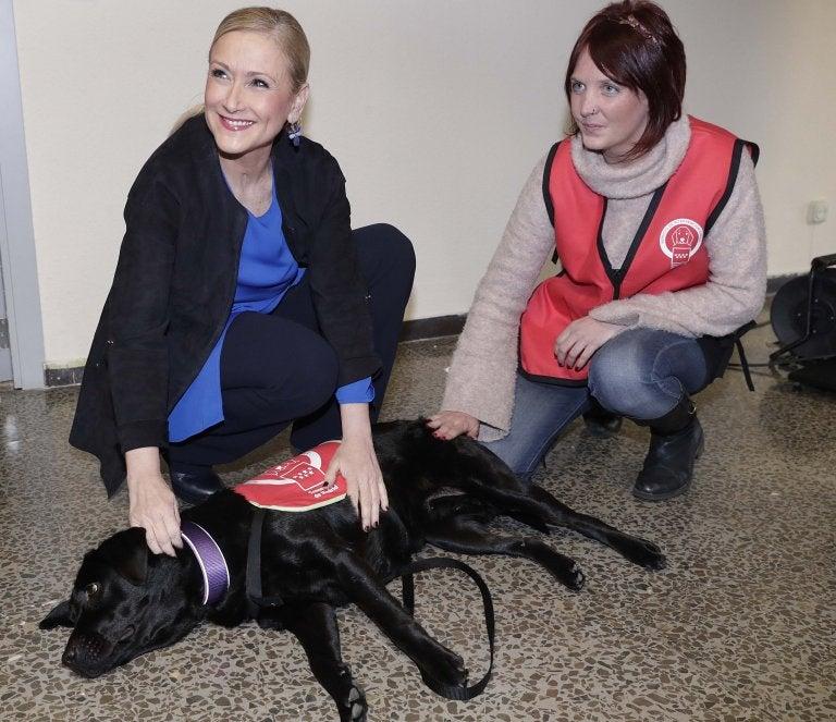 Une bénévole, une femme et l'un des chiens posent ensemble
