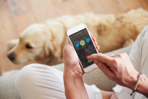 une femme sur son mobile et son chien à ses pieds