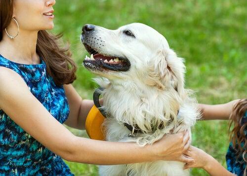 un chien dans les bras d'une femme et petite fille