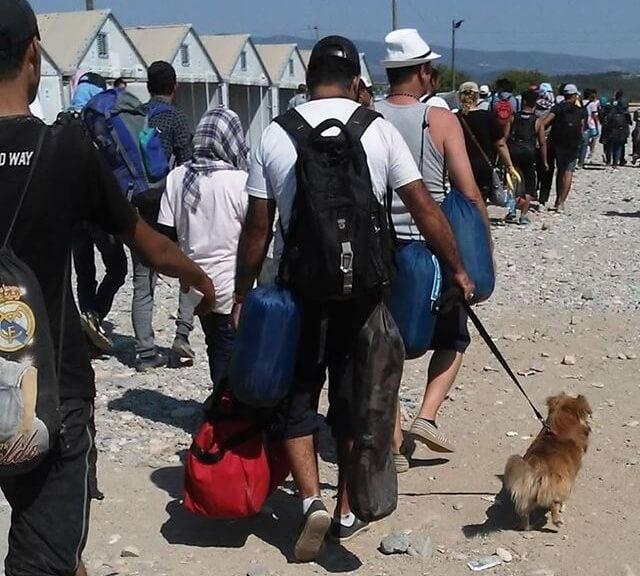 Un réfugié débarque sur la plage avec son chien en laisse