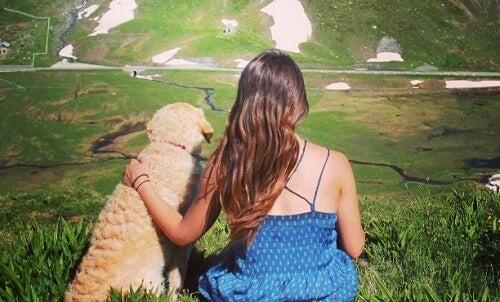 Un femme est un chien sont assis côte à côte et regardent l'horizon