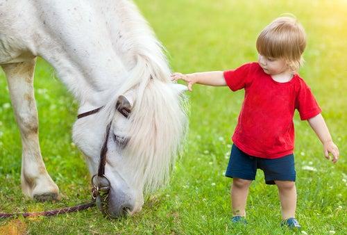 petit garçon qui caresse un cheval
