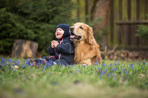 Un enfant est assis par terre dans un champs avec un gros chien à ses côtés