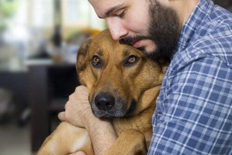 chien dans les bras de son maitre