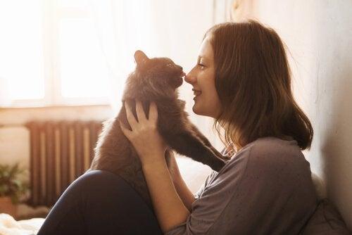 un chat lèche le nez d'une femme qui le tient dans ses bras