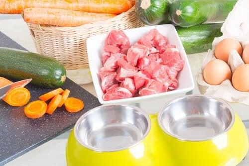 un plan de travail avec des légumes, de la viande des œufs et une gamelle de chien
