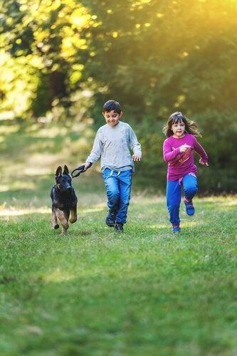 deux enfants qui promènent un chiot berger allemand