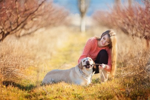 chien en promenade avec sa maitresse