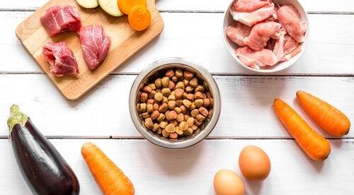 croquettes, viande, carottes et oeufs sur un plan de travail