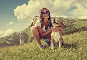 aller à la montagne avec votre chien