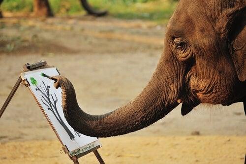 Des éléphants qui peignent : abus d'animaux ?