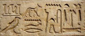 rôle du chien dans les civilisations anciennes