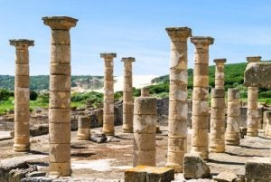 baleines disparues et romains