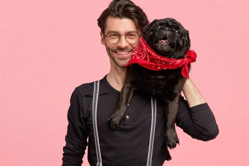 Les chiens ressemblent-ils à leurs maîtres ?
