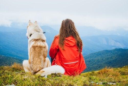 Posséder un animal de compagnie vous rendra plus heureux
