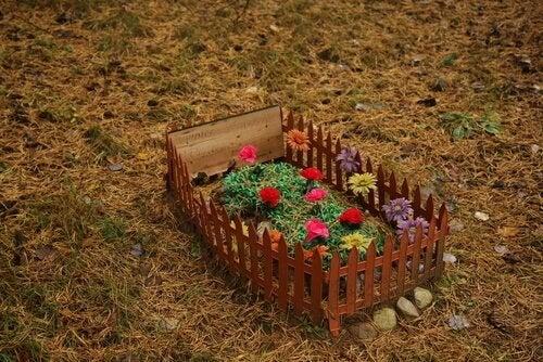 Où enterrer votre animal de compagnie ?