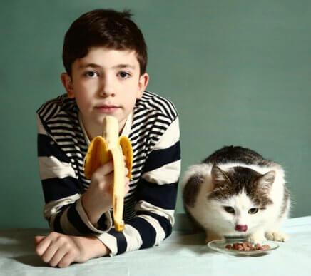 Découvrez les fruits que les chats peuvent manger