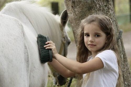Le pansage de votre cheval