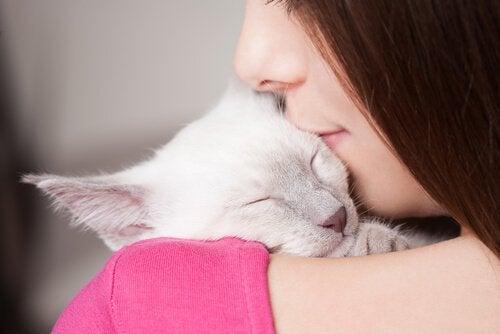 dDormir avec un chat présente des avantages et des inconvénients