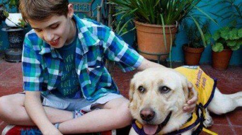 La tendre histoire de Felipe et de son chien guide