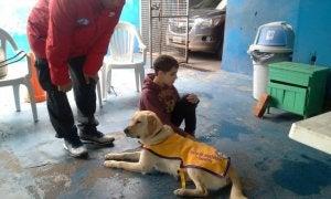 chien guide et son jeune maître