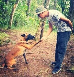 Bones, un chien qui recherche les personnes disparues