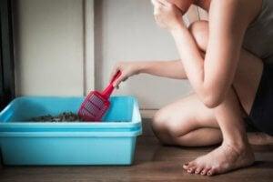 prévenir les infections urinaires chez le chat en nettoyant bien la litière
