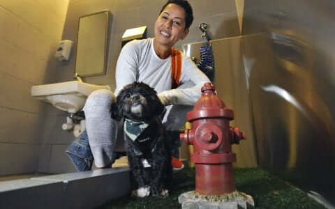 Une femme et son chien dans les toilettes pour animaux d'un aéroport