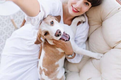 Un chien médiateur avec sa maîtresse