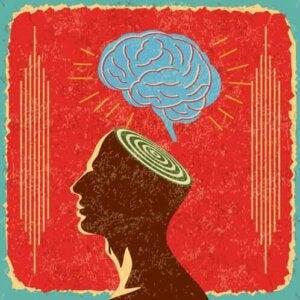 La zoanthropie et le cerveau