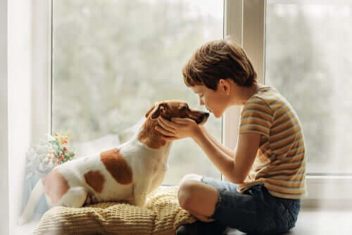 Les câlins aux chiens pendant le coronavirus