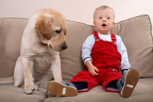 A dog sitting next to a child with Down syndrome
