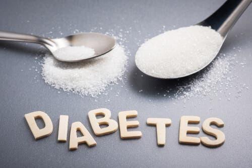 Un chien diabétique doit suivre un régime alimentaire particulier