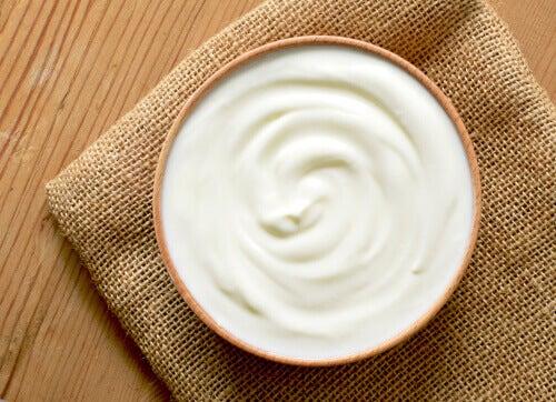 Le yaourt probiotique et son effet sur le microbiote intestinal