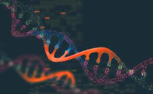 La génétique et les populations animales