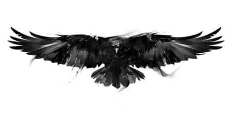 Le corbeau de Charles Dickens fait partie des curieux animaux de certains écrivains.