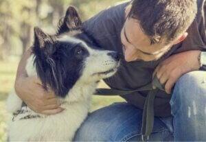 Un maître qui donne de l'affection à son chien.