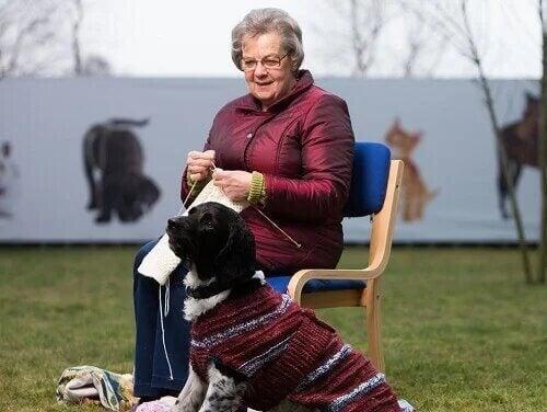 Un chien noir en compagnie d'une femme âgée.