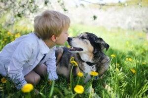 Affection entre un enfant et un chien.