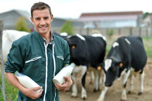 L'allaitement chez les animaux de ferme