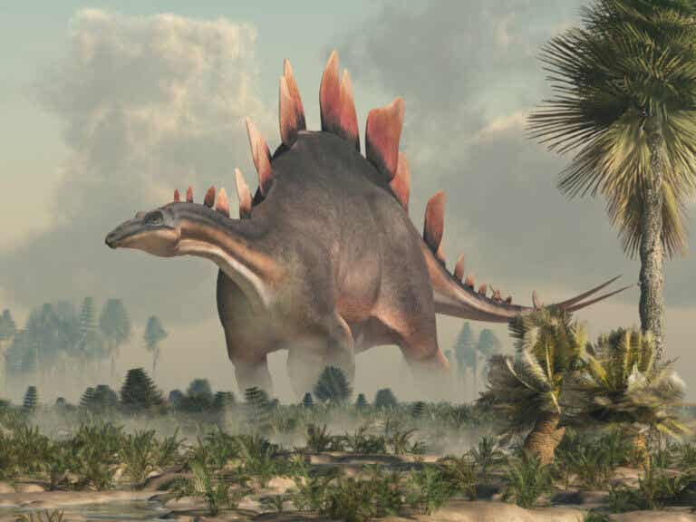 Tout ce que vous devez savoir sur le stégosaure